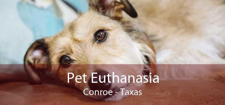 Pet Euthanasia Conroe - Taxas