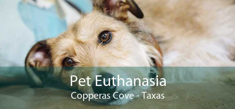 Pet Euthanasia Copperas Cove - Taxas