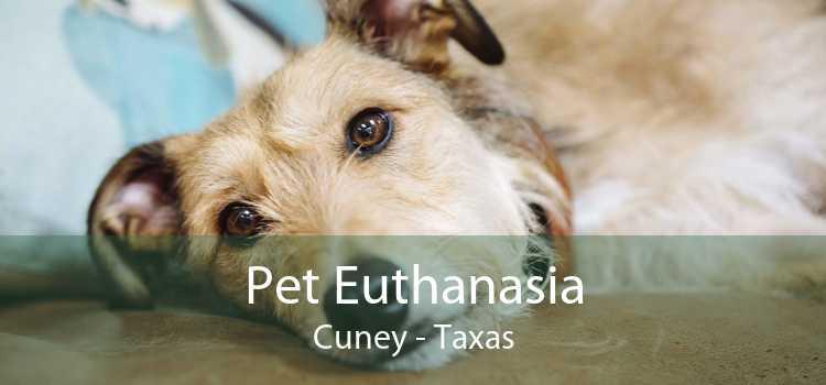 Pet Euthanasia Cuney - Taxas