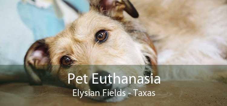 Pet Euthanasia Elysian Fields - Taxas