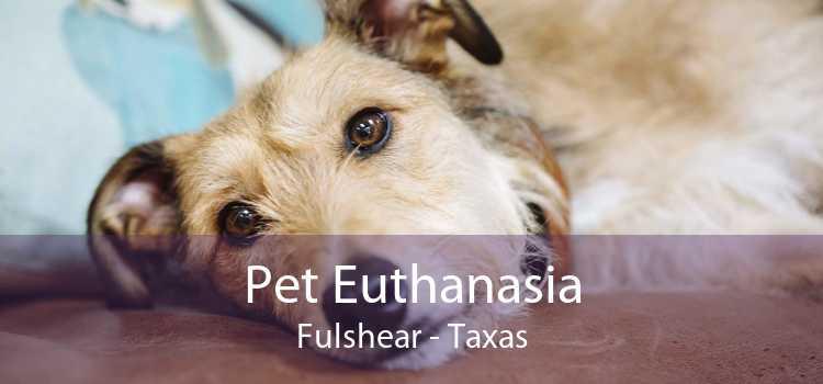 Pet Euthanasia Fulshear - Taxas