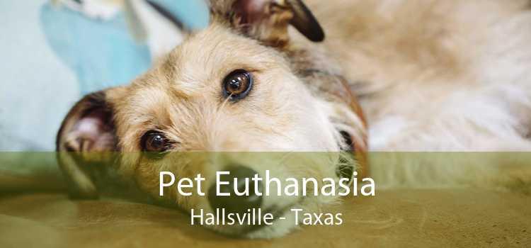 Pet Euthanasia Hallsville - Taxas