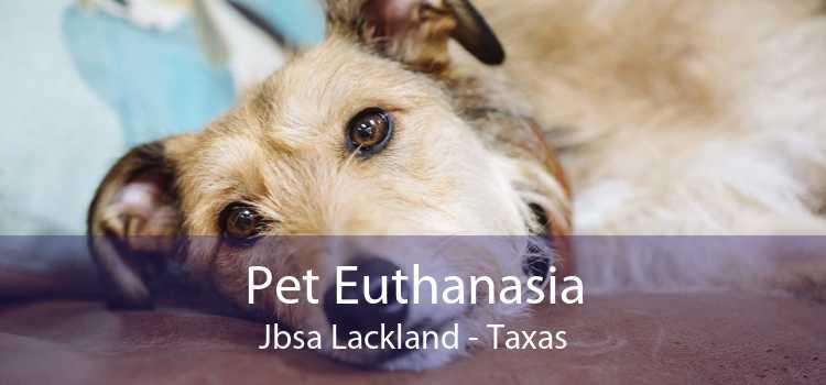 Pet Euthanasia Jbsa Lackland - Taxas