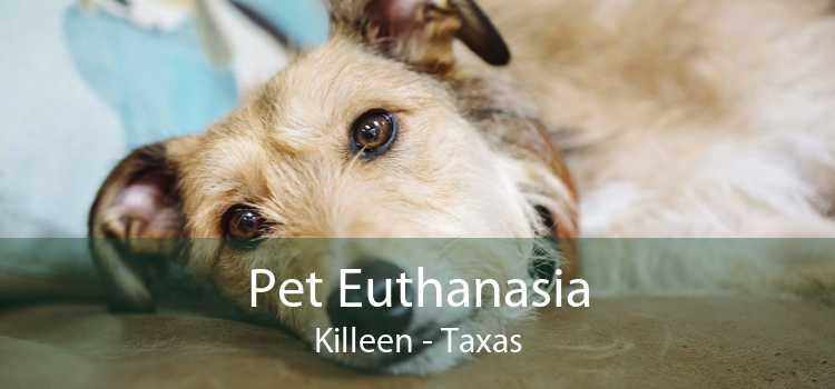 Pet Euthanasia Killeen - Taxas