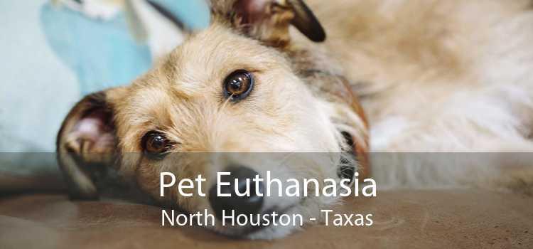 Pet Euthanasia North Houston - Taxas