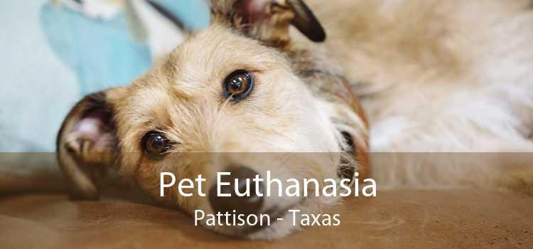 Pet Euthanasia Pattison - Taxas