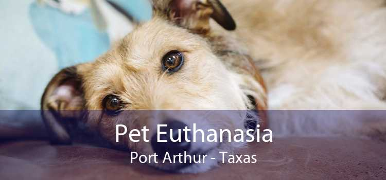 Pet Euthanasia Port Arthur - Taxas