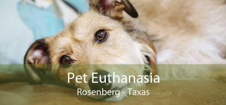 Pet Euthanasia Rosenberg - Taxas