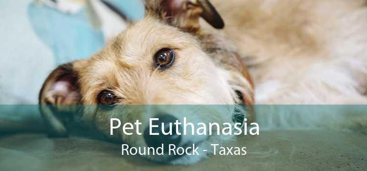 Pet Euthanasia Round Rock - Taxas