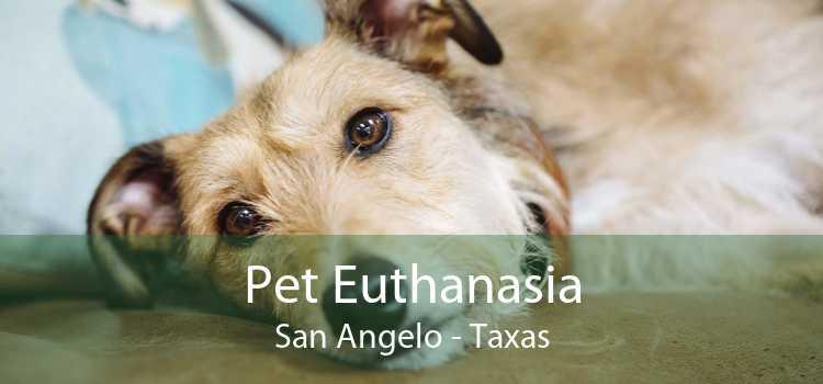 Pet Euthanasia San Angelo - Taxas