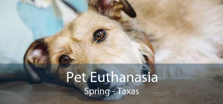 Pet Euthanasia Spring - Taxas