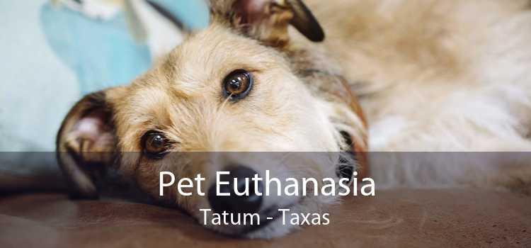 Pet Euthanasia Tatum - Taxas