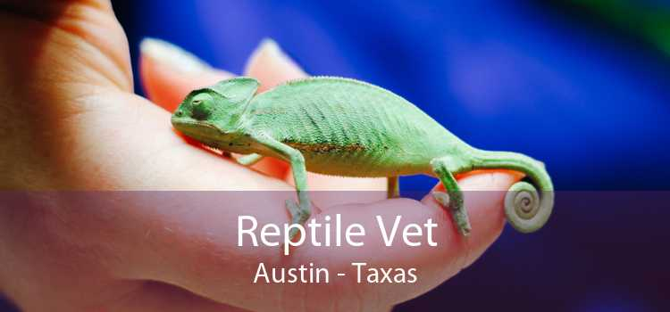 Reptile Vet Austin - Taxas
