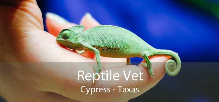 Reptile Vet Cypress - Taxas