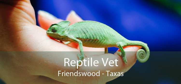Reptile Vet Friendswood - Taxas