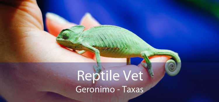 Reptile Vet Geronimo - Taxas