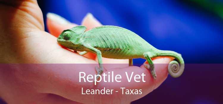 Reptile Vet Leander - Taxas