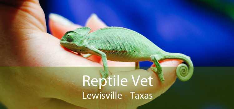 Reptile Vet Lewisville - Taxas