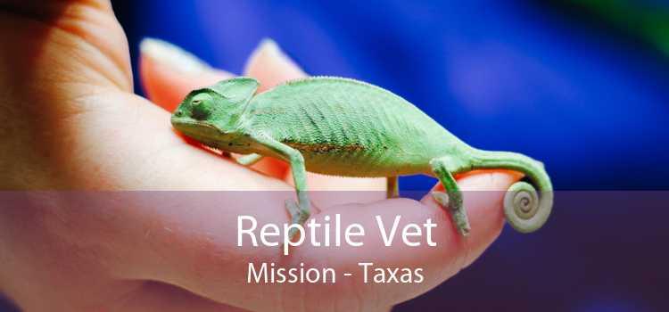 Reptile Vet Mission - Taxas