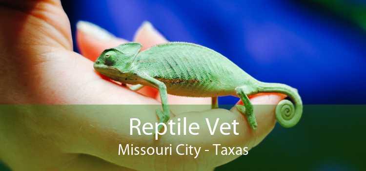 Reptile Vet Missouri City - Taxas