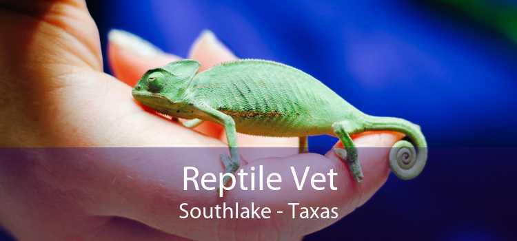 Reptile Vet Southlake - Taxas