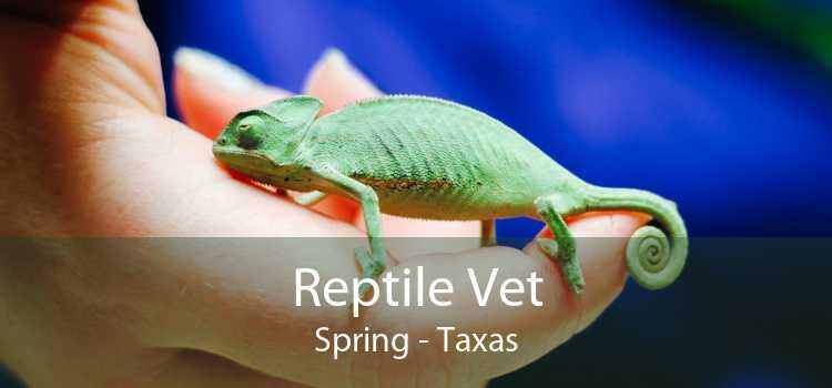 Reptile Vet Spring - Taxas
