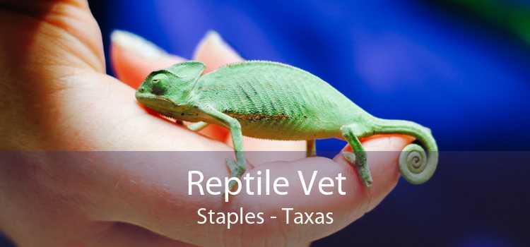 Reptile Vet Staples - Taxas
