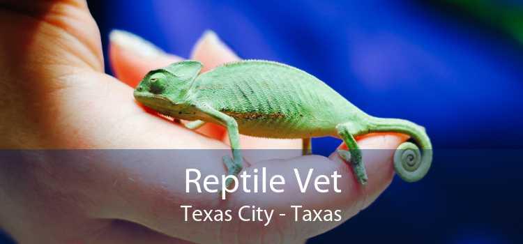 Reptile Vet Texas City - Taxas