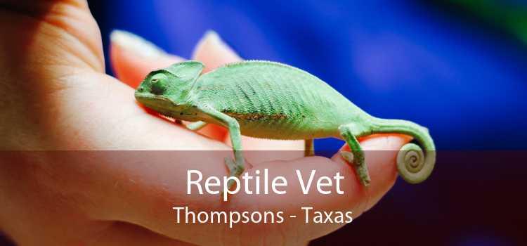 Reptile Vet Thompsons - Taxas
