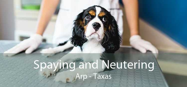 Spaying and Neutering Arp - Taxas