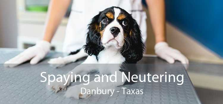 Spaying and Neutering Danbury - Taxas