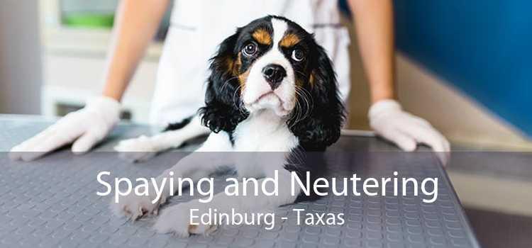 Spaying and Neutering Edinburg - Taxas