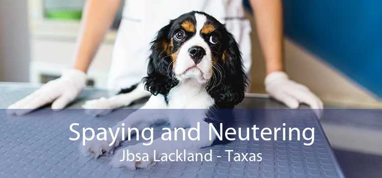 Spaying and Neutering Jbsa Lackland - Taxas