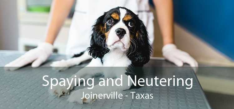 Spaying and Neutering Joinerville - Taxas