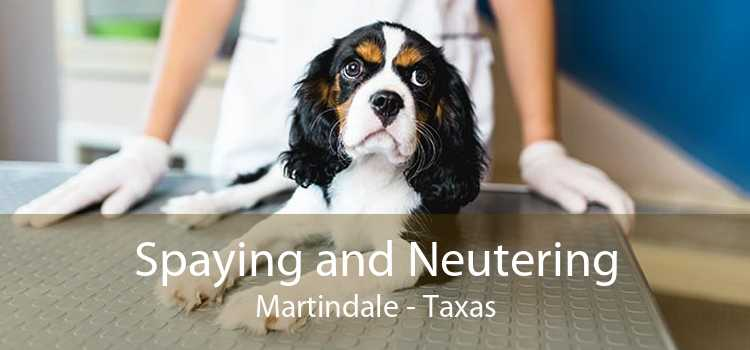 Spaying and Neutering Martindale - Taxas