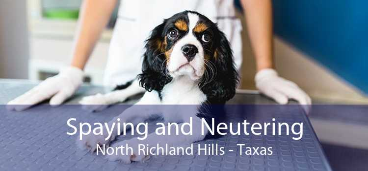 Spaying and Neutering North Richland Hills - Taxas