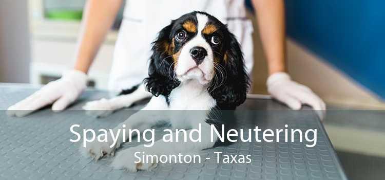 Spaying and Neutering Simonton - Taxas