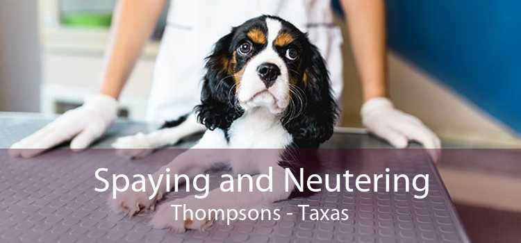 Spaying and Neutering Thompsons - Taxas